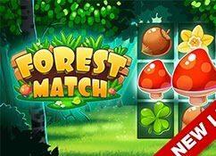 El partido del bosque...
